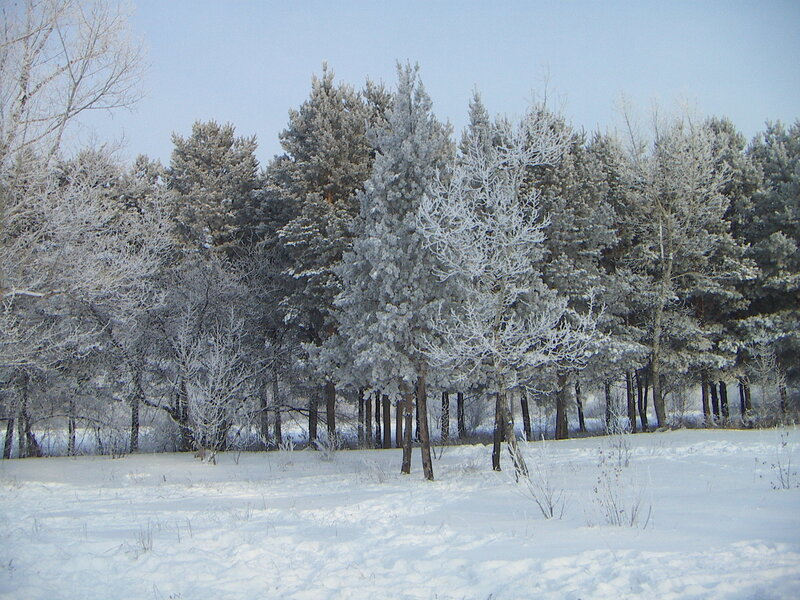 http://img-fotki.yandex.ru/get/3611/snowbally.0/0_14965_dbde76c5_XL.jpg
