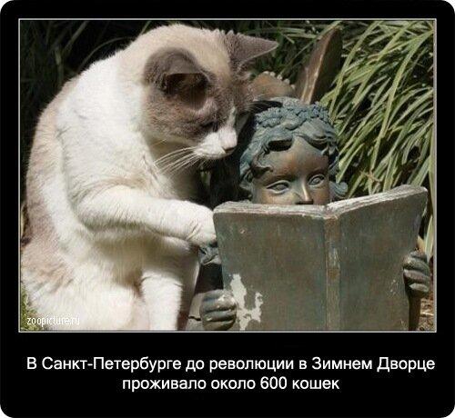 http://img-fotki.yandex.ru/get/3611/yes06.21/0_113ba_9aab156_XL.jpg