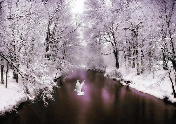 peace-on-earth-jessica-jenney.jpg