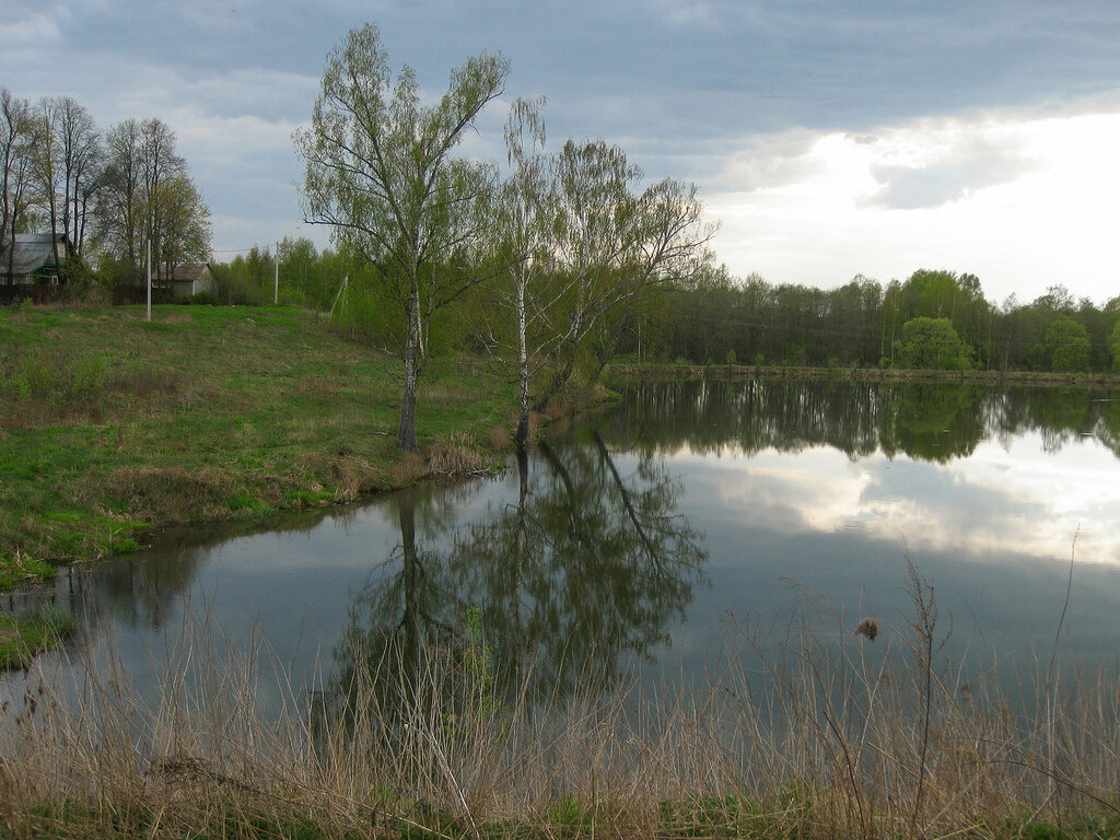 Нижний пруд в Рождественно-Суворово