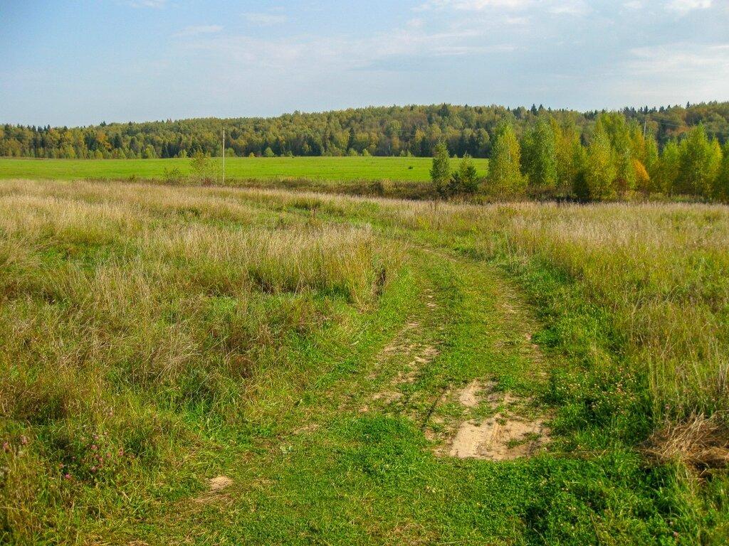 Полевая дорога, Рождественно-Суворово