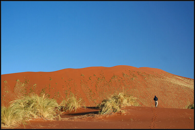 Walking into the Dune