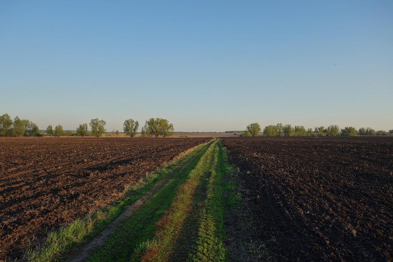 поля Рязанщины