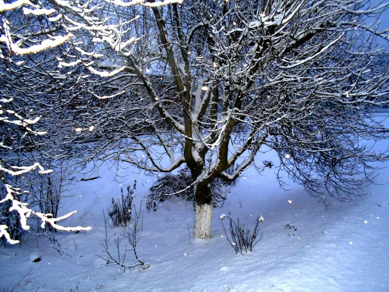 А снег идёт ... DSCN3537.JPG