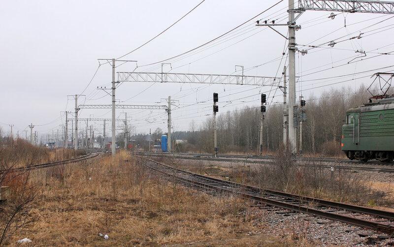 Станция Новолисино, ветка на Новгород