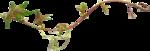 класт 387_crazypink_flojuscrap_element__8_.png