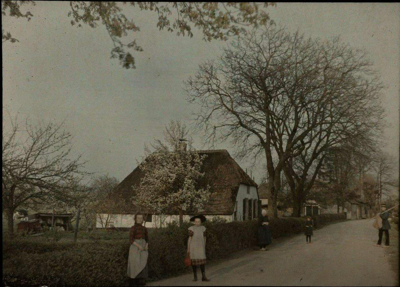 1913. Крестьяне на грунтовой дороге в деревне