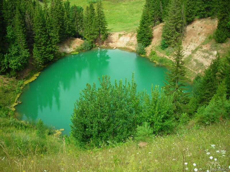 Изумрудная зелень