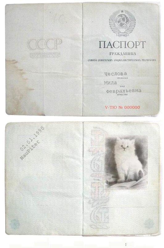 http://img-fotki.yandex.ru/get/3613/klayly.2/0_2a4f8_95fa66de_XL.jpg