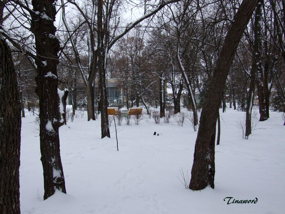 Парк-им.-В.И,-Ленина-19.jpg