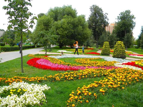 Цветы*