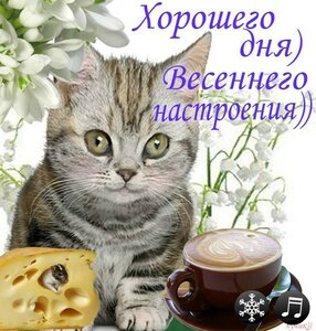 https://img-fotki.yandex.ru/get/361460/131884990.e5/0_15d27c_2481da54_M.jpg