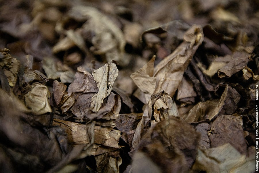 Давайте посмотрим на сам  процесс производства погарских сигар , а историю я дорасска