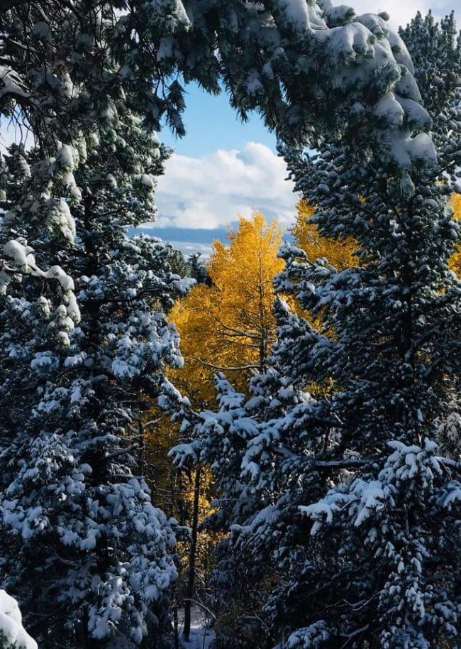 20фотографий, которые доказывают, что нет ничего прекраснее зимы (20 фото)