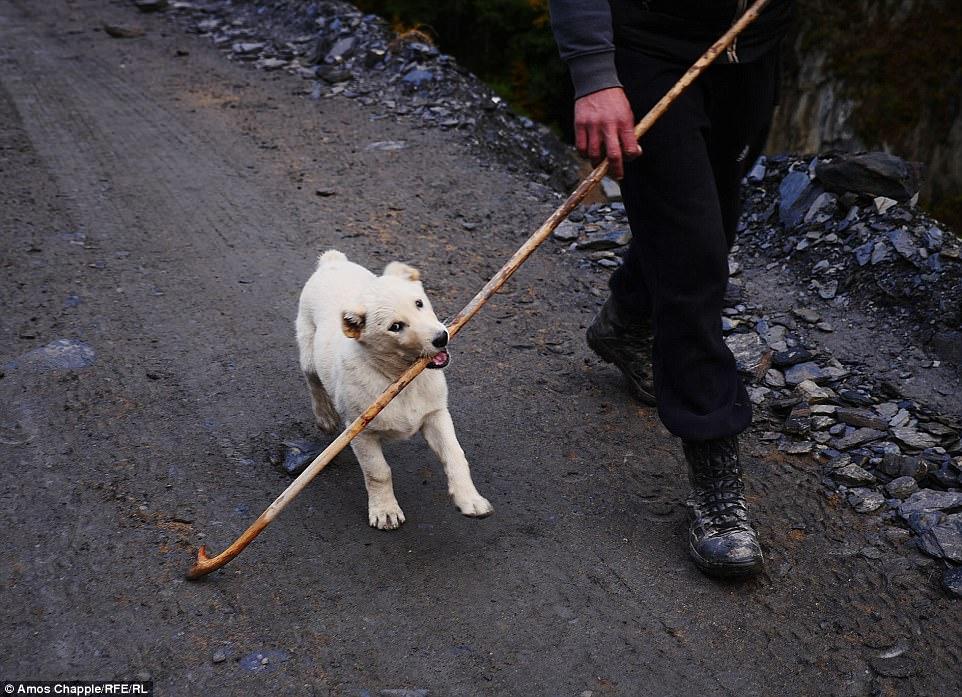 После всех превратностей с подъемом в горы и опасным спуском Чаппл смог наконец с облегчением подума