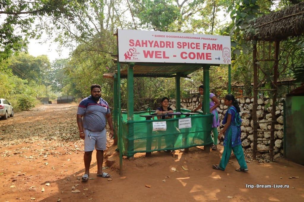 Плантация специй (Sahakari Spice Farms)
