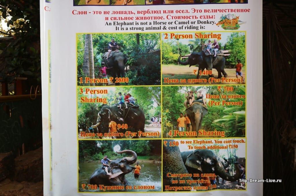 Слон - это не только ценный мех...