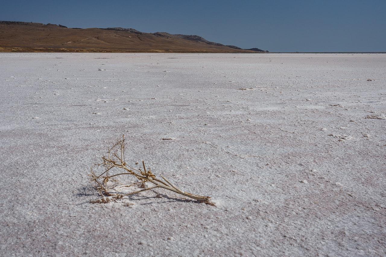 Каяшское озеро