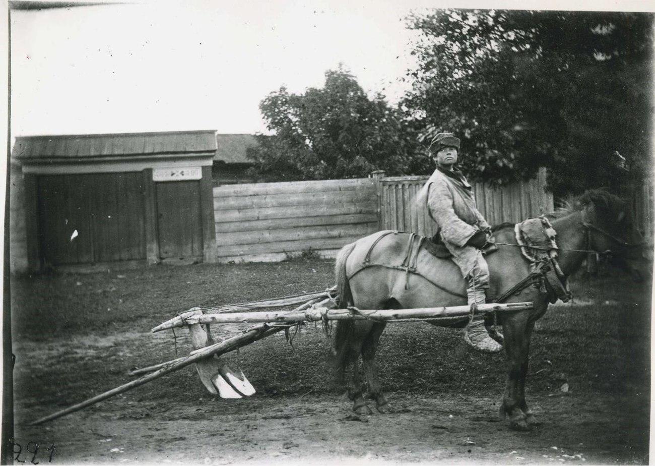 Окрестности Перми. Лошадь, запряженная в соху для пахоты