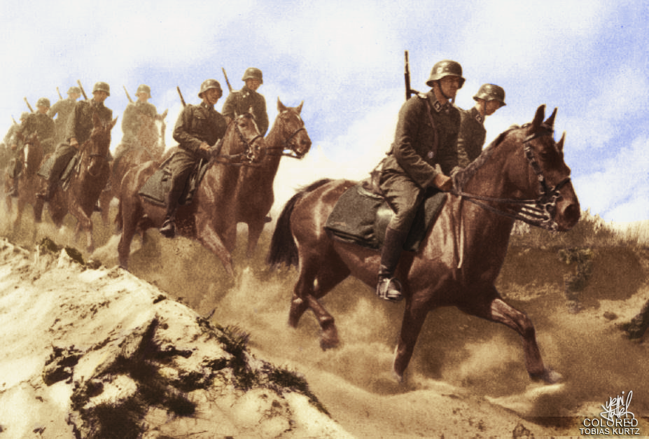 8th_riders_division_ss_florian_geyer_by_kapo_neu-d6sps3e.png