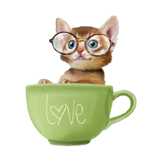 кошки-кошки-пнг.png