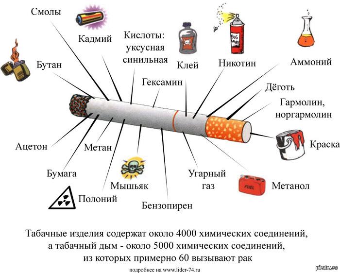 Международный день отказа от курения. из чего состоят табачные изделия