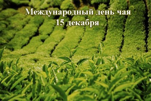Открытки. С Международным днем чая! 15 декабря открытки фото рисунки картинки поздравления