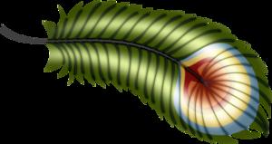 перышки
