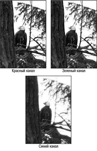 https://img-fotki.yandex.ru/get/361493/251308575.5/0_1c438d_f906317d_L.jpg