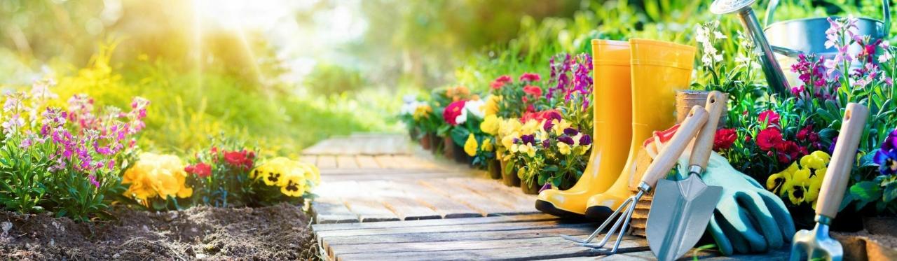 Maroosya питомник цветов