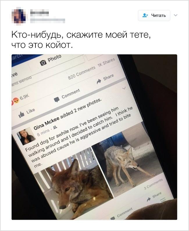 © twitter / brookeondayog   9.