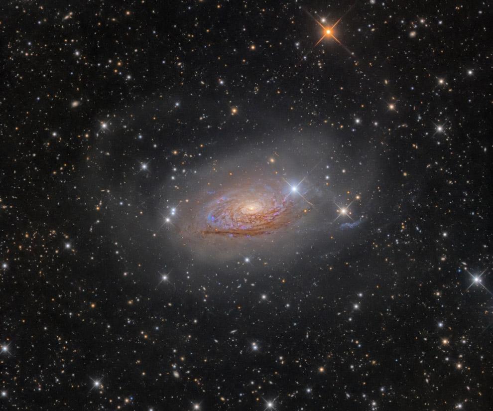 7. Категория «Галактики». Спиральная галактика NGC 7331 в созвездии Пегас, на расстоянии окол