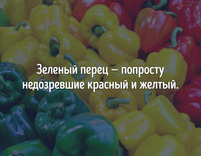 © depositphotos      Доказательство