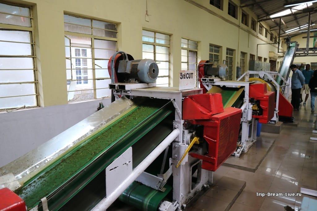 Работающая линия по переработке чая