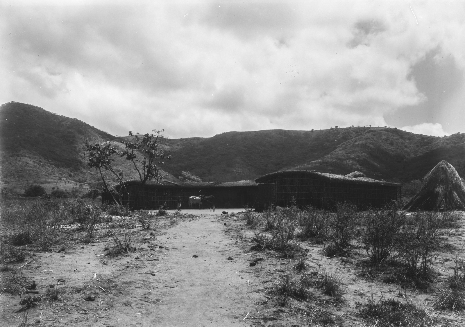 26. Район Морогоро. Поселение вблизи гор Улугуру