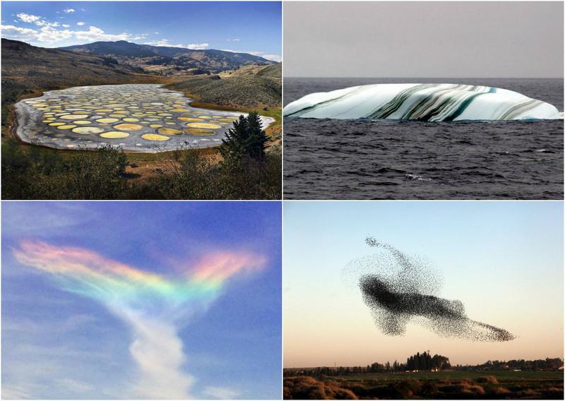 Красивые и необычные чудеса природы