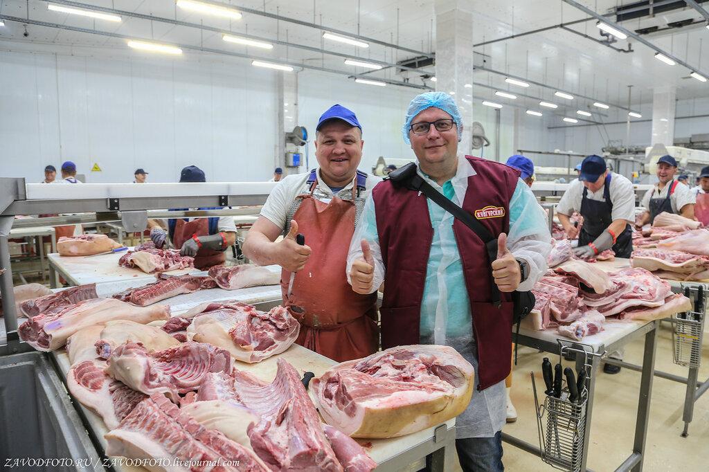 Россия на 55 % увеличила продажи мяса за рубеж