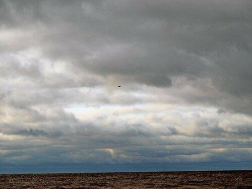 Cедина осеннего залива
