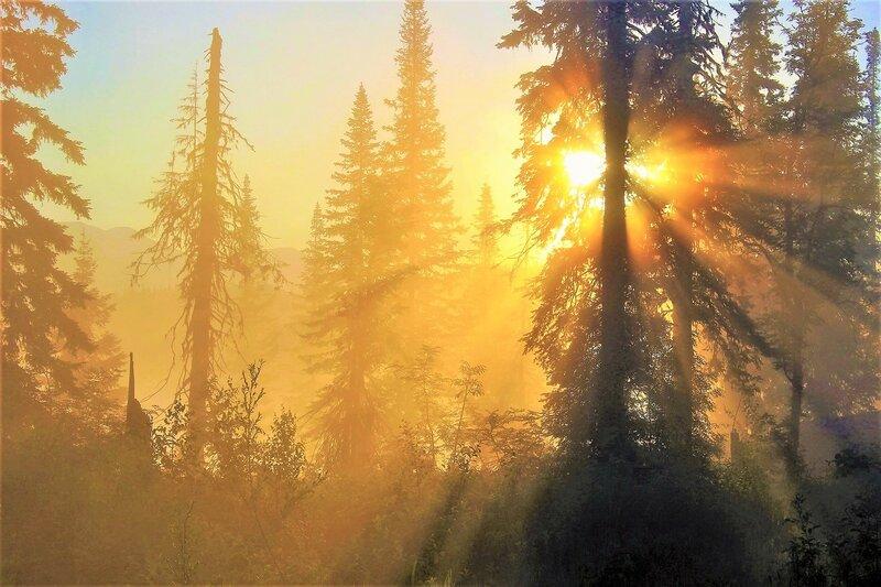 Солнце светлое восходит, озаряя мглистый дол