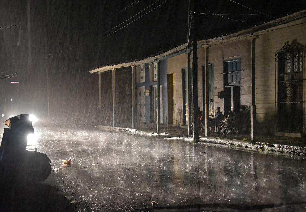16. Дерево против урагана «Ирма». Ураган победил. (Фото Desmond Boylan):