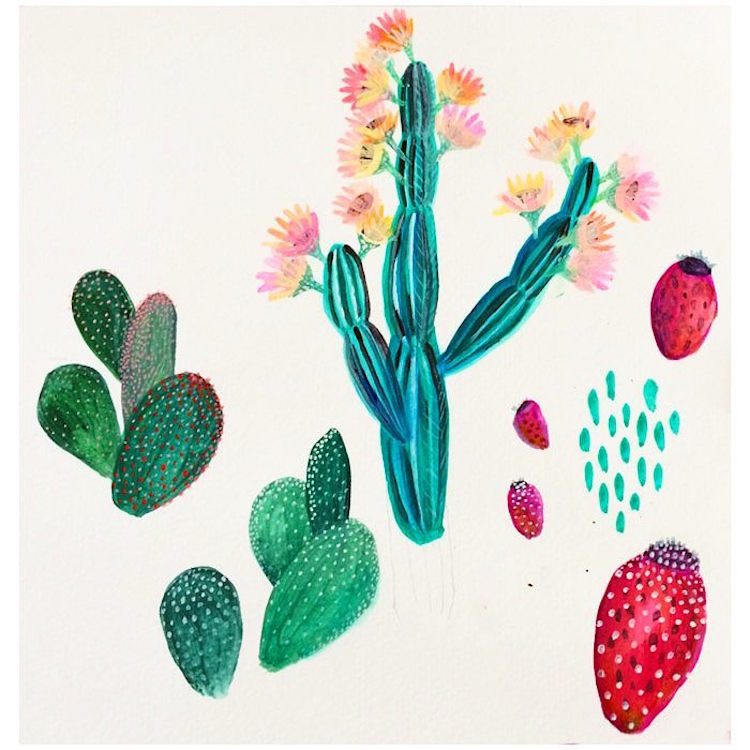 Botanical Illustration Series Capturse the Colorful Charm of Houseplants