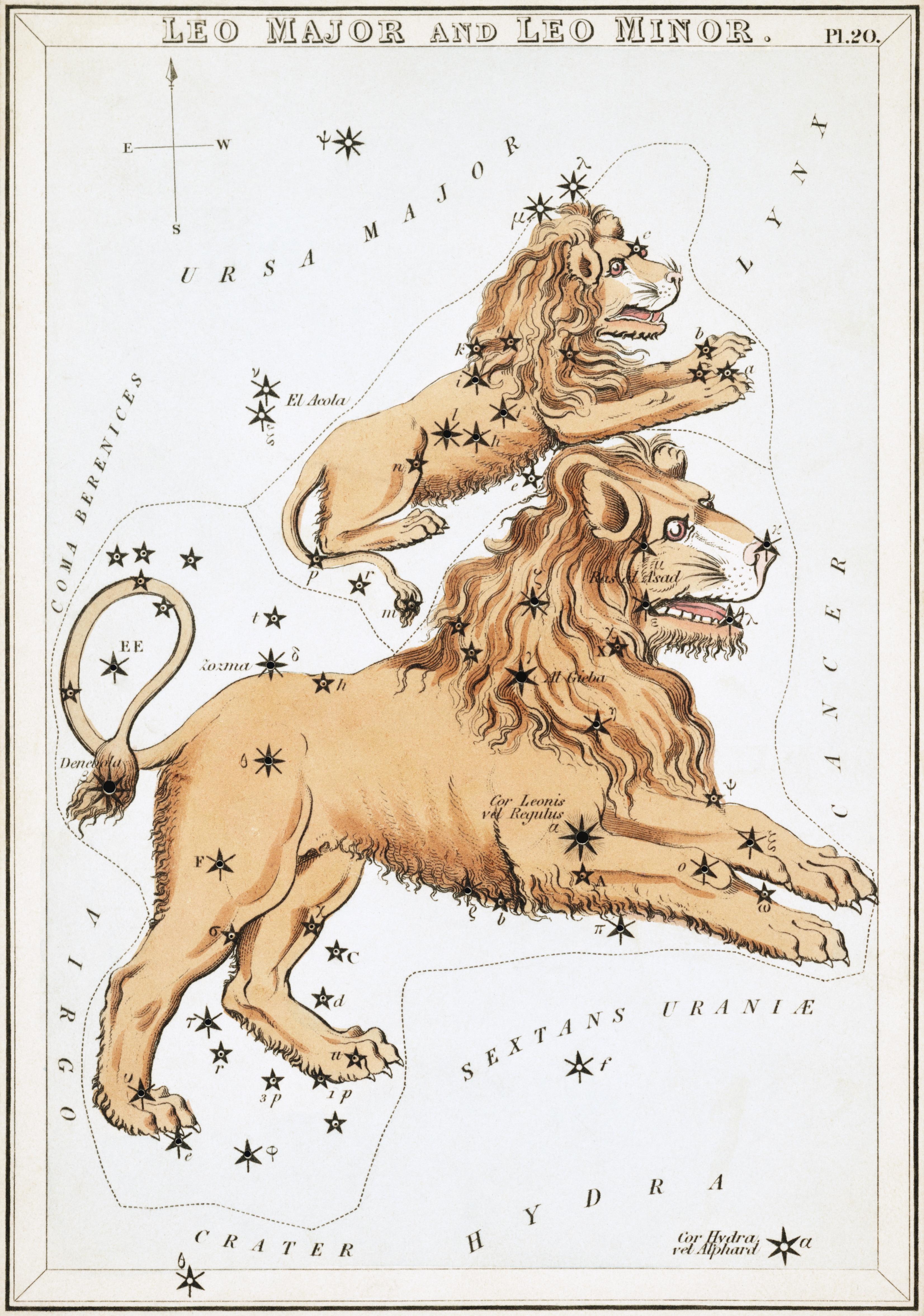 Карточка №20: Лев и Малый Лев