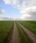 Дорога в Каменку.png