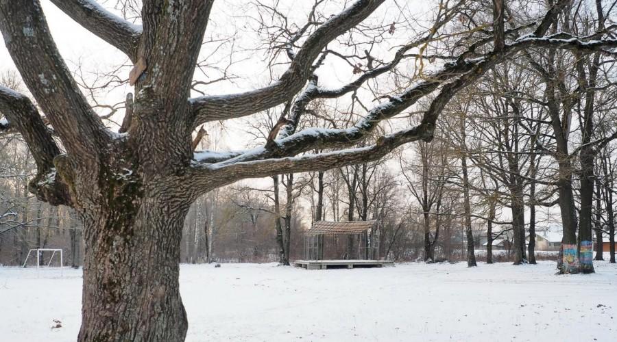 Ферзиковчане надеются на создание в своём посёлке парка культуры и отдыха