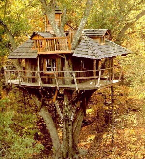 0 180195 8a2ea830 orig - Дом на дереве - кто о нем не мечтал в детстве?