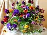 цветы,букеты,разное
