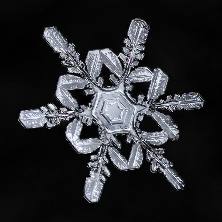 Макро-фотография: снежинки (14 фото)