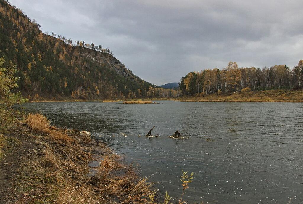 Красноярск река мана рыбалка