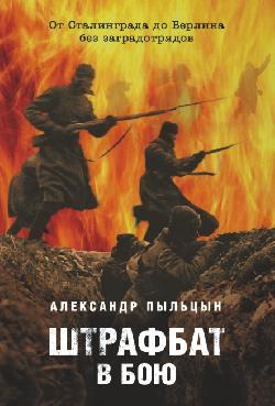 20180202_23-00-Солженицын, штрафники и Сталинград. Об очередном фейке-pic2