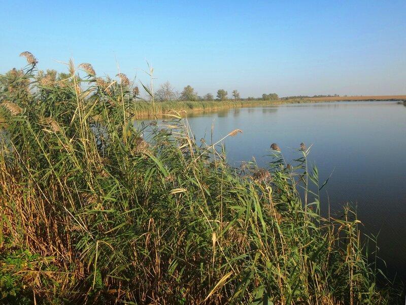 У водоёма ... 17. Фото из велокольца. Ахтари-Староминская-Бейсугский пролив (113).JPG